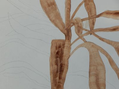 Detail of a painting started with a drawing and then a (turpentine) wash in burnt umber.